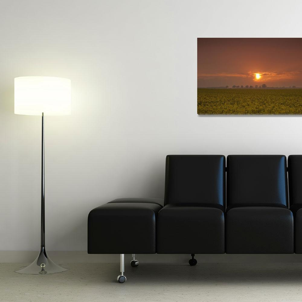 """""""The Red Glow Of A Sunset Over A Field Northumberl&quot  by DesignPics"""