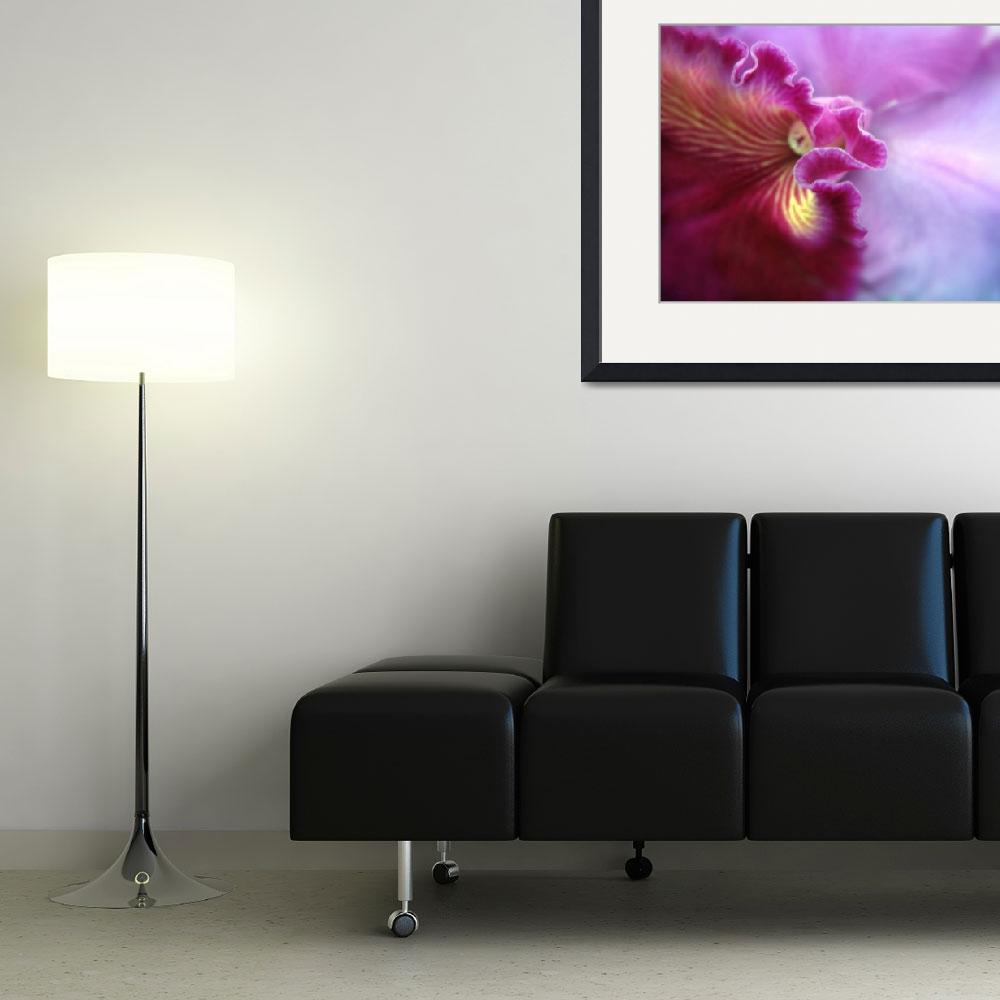 """""""Orchid in Violet&quot  (2011) by JessicaJenney"""