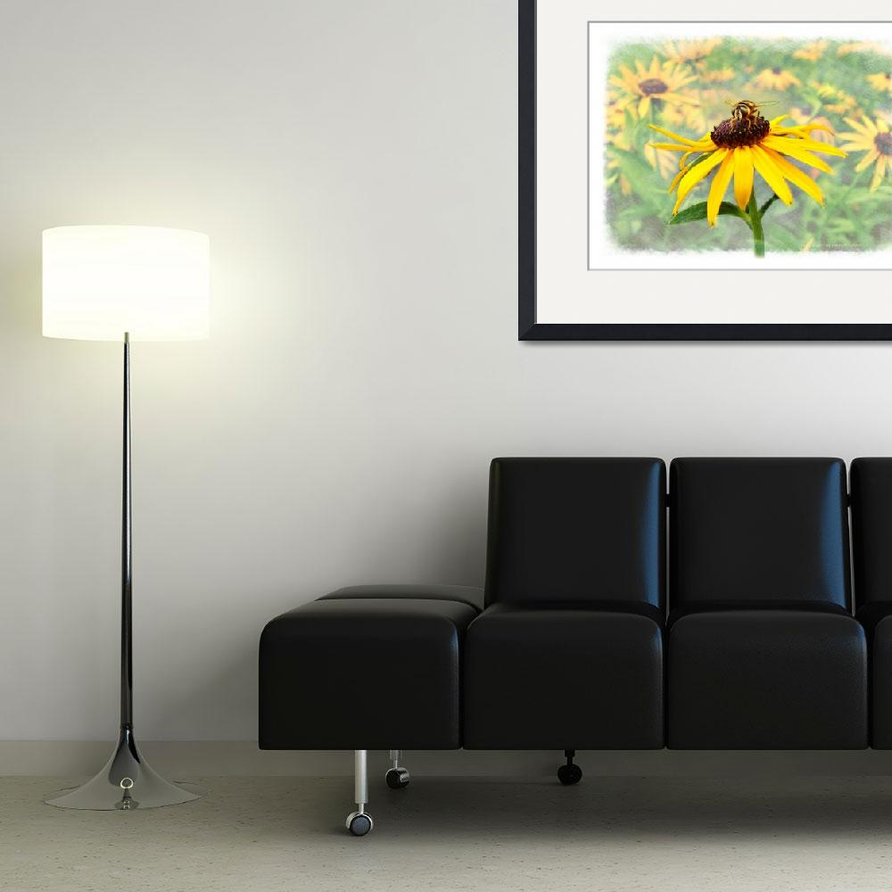 """""""Bee on Blackeyed Susan&quot  (2006) by nancielaing"""