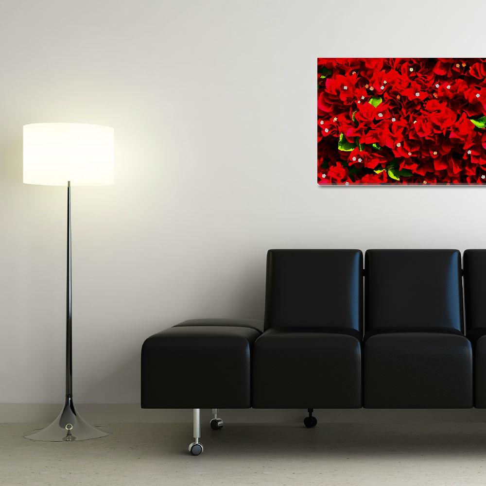 """Bougainvillea Wall DigiArt""  (2008) by rmccord"