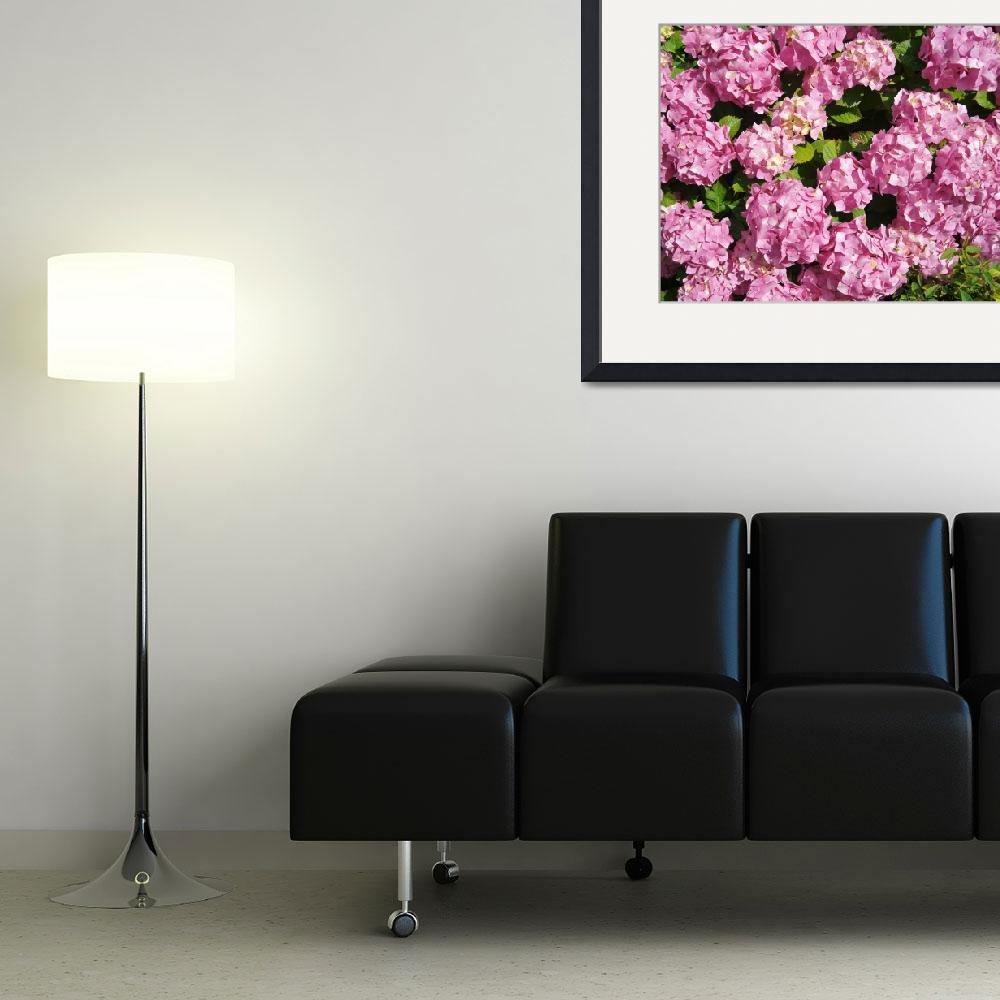 """""""Pink Hydrangeas from an English country garden&quot  by InspiringImages"""