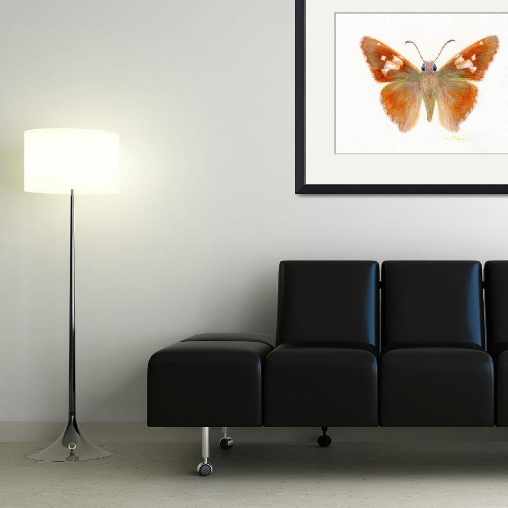 """""""Silver Spotted skipper butterfly&quot  (2008) by LisaMclaughlin"""