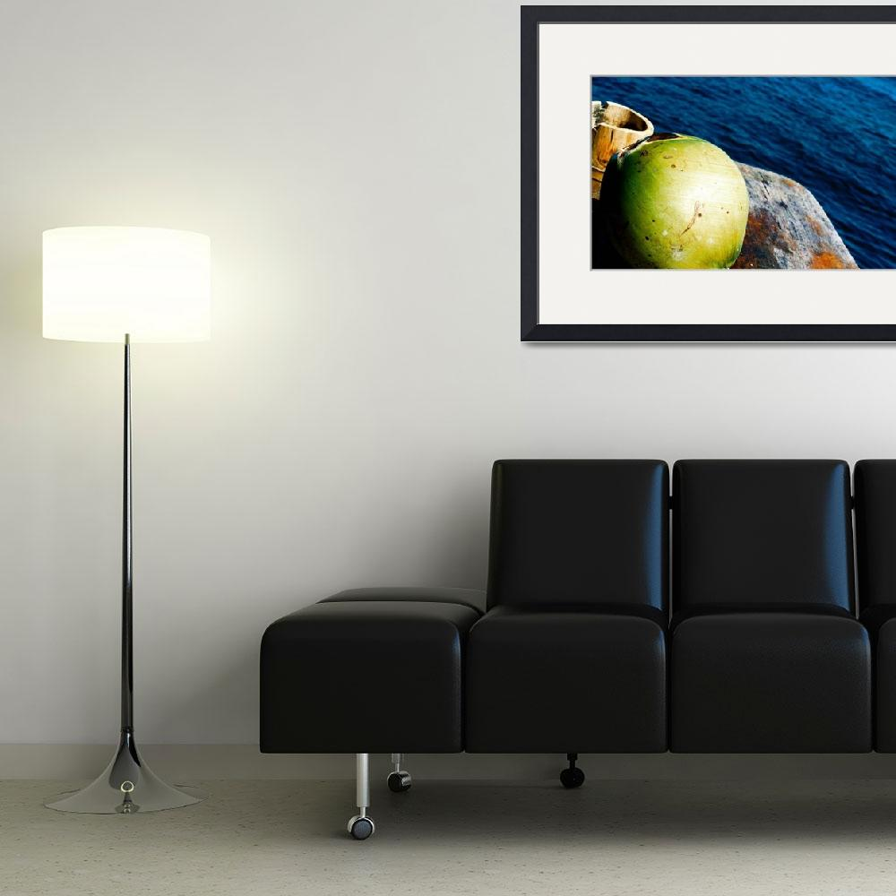 """""""Tropical still life&quot  (2009) by Revulu"""