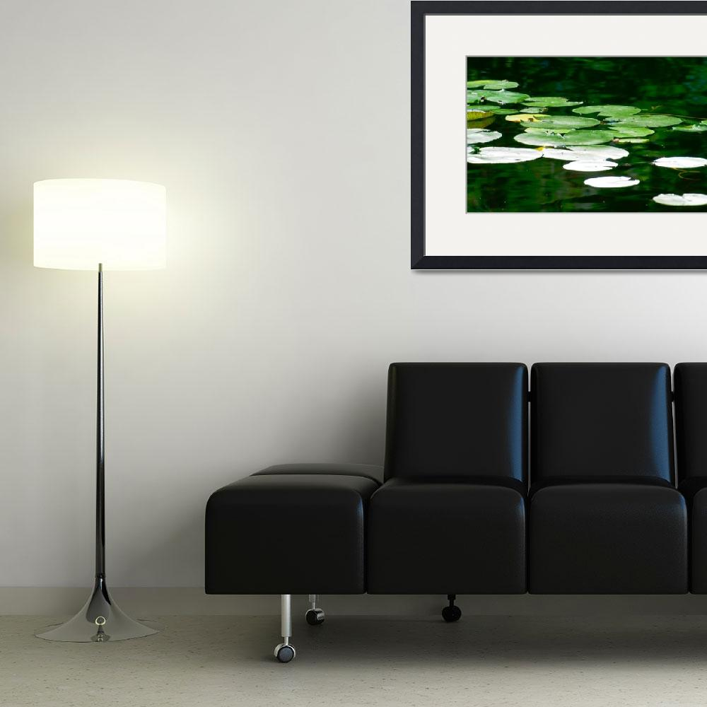 """""""Lily Pads on the Pond""""  (2012) by boppintheblues"""