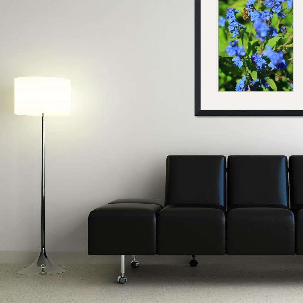 """""""Bee Pollinating Forget-Me-Nots&quot  (2012) by newimage"""