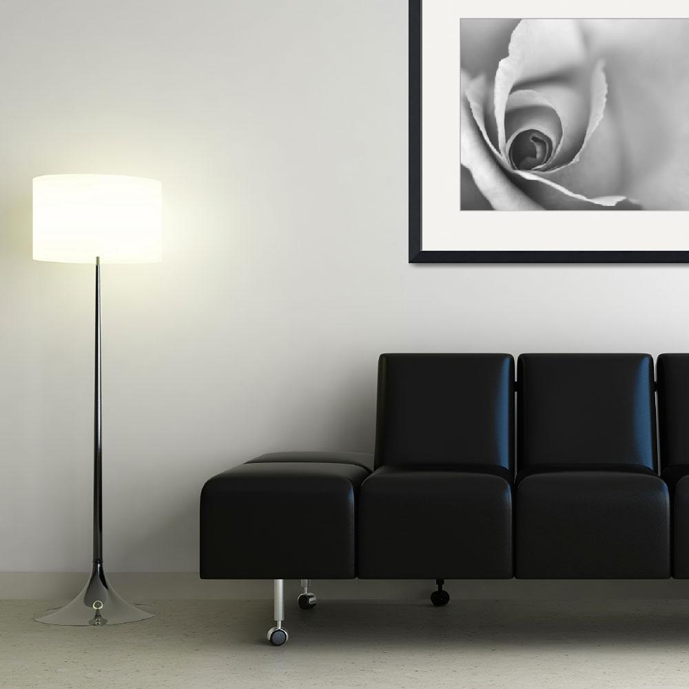 """""""Romantic Black and White Floral Wall Art&quot  (2012) by NatalieKinnear"""