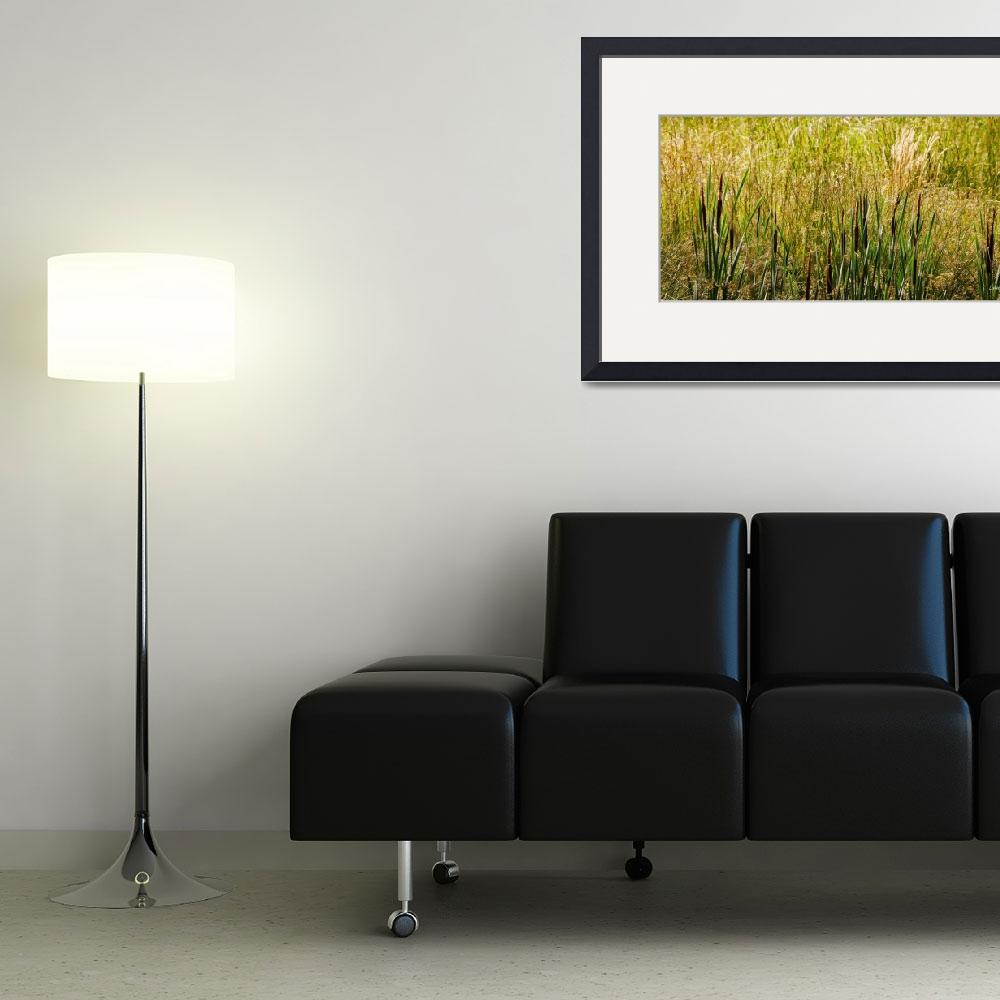 """cattails""  (2013) by LouiseReeves"