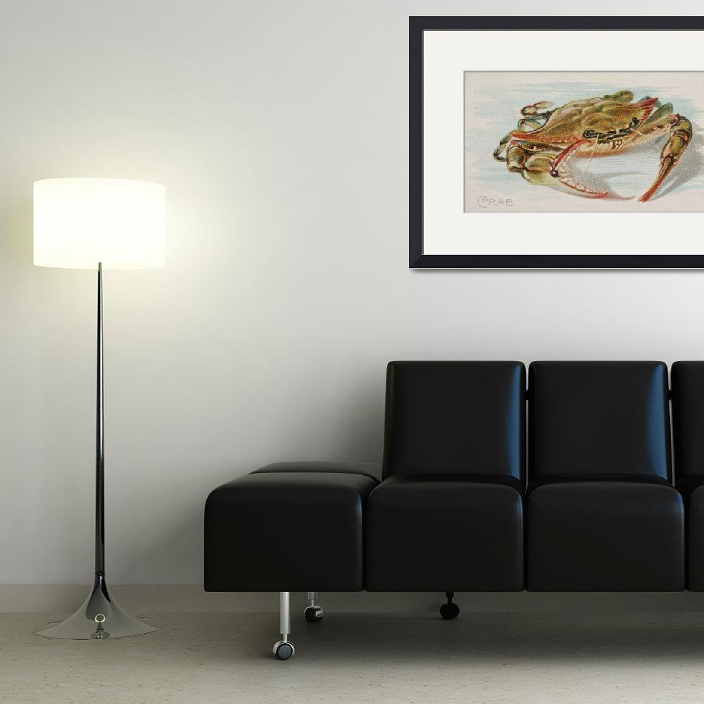 """Vintage Illustration of a Crab (1889)""  by Alleycatshirts"