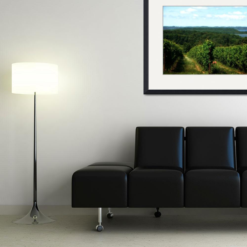 """""""Vineyard on the Peninsula""""  (2010) by Michelle1991"""