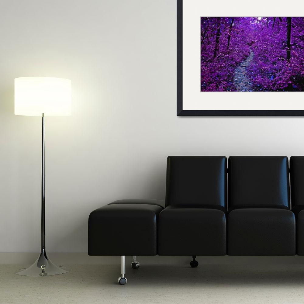 """""""Purple Forest""""  (2011) by ideaproductions"""
