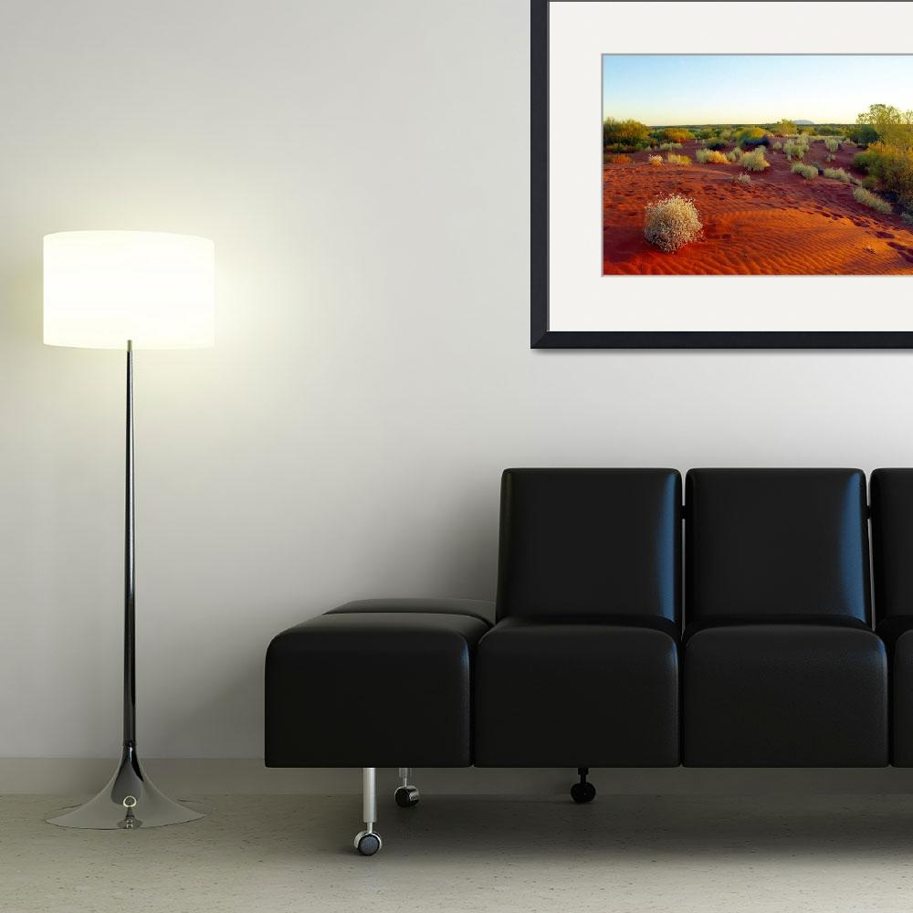 """""""Red sands of the outback, Australia&quot  (2011) by biriart"""