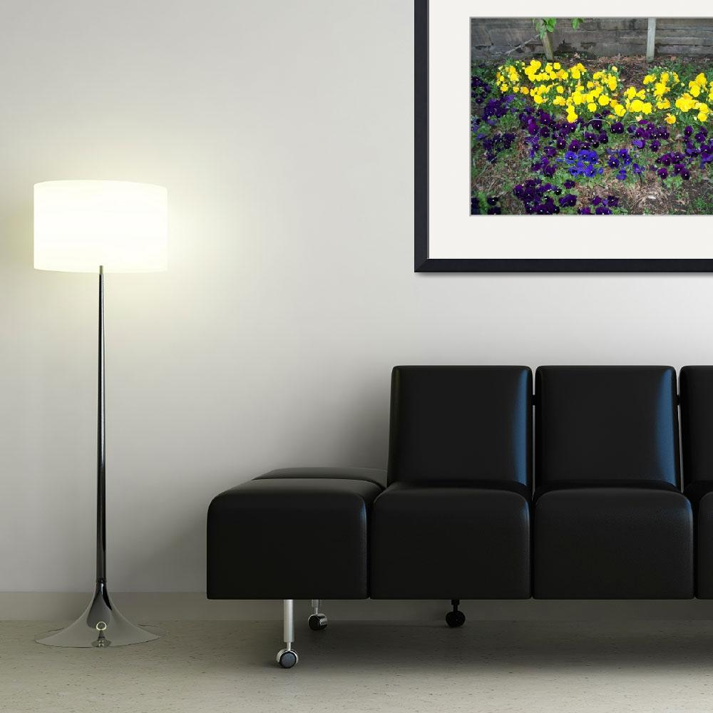 """""""Yellow and Purple Flowerbed""""  (2010) by EmmaLuLu"""