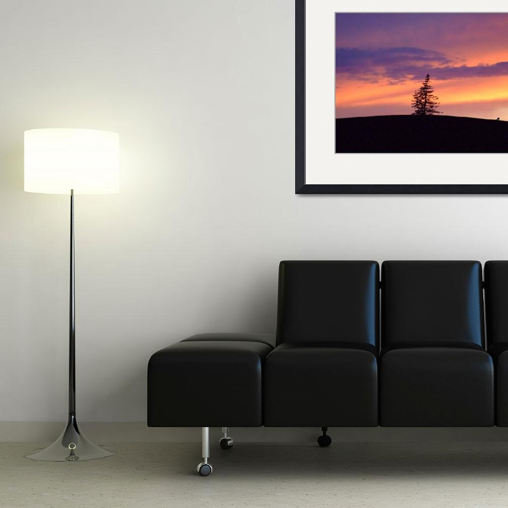 """""""Deer and sunset&quot  (2009) by GregBanks"""