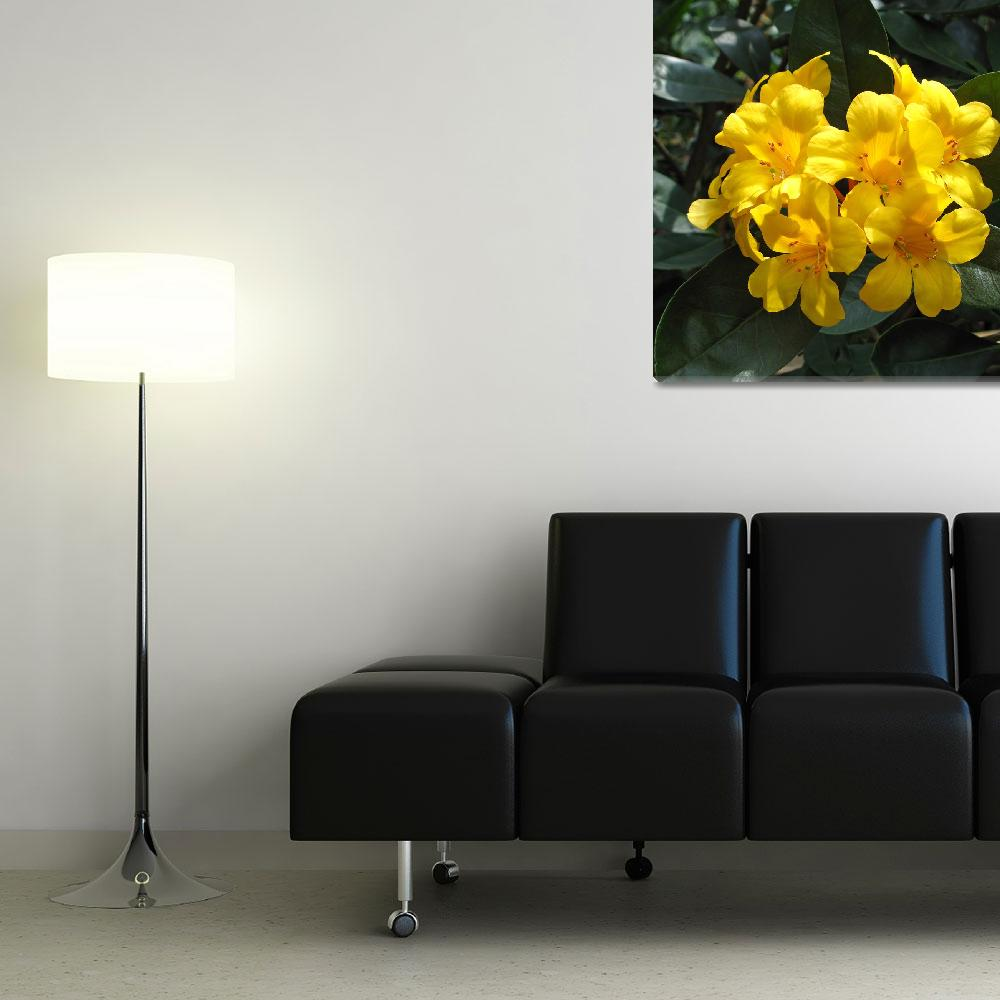 """""""Yellow Rhododendron""""  (2014) by FantaSeaArt"""