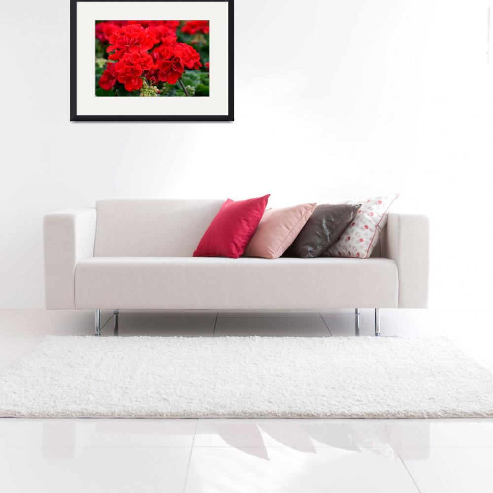 """""""Expressive Floral Red Geraniums E131716&quot  (2016) by MasArtStudio"""