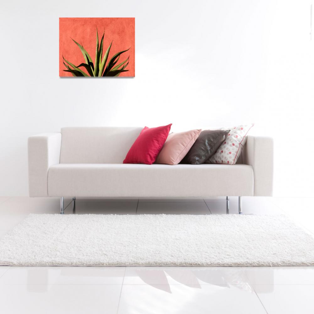 """""""Agave on Red Stucco&quot  (2007) by lisakhering"""