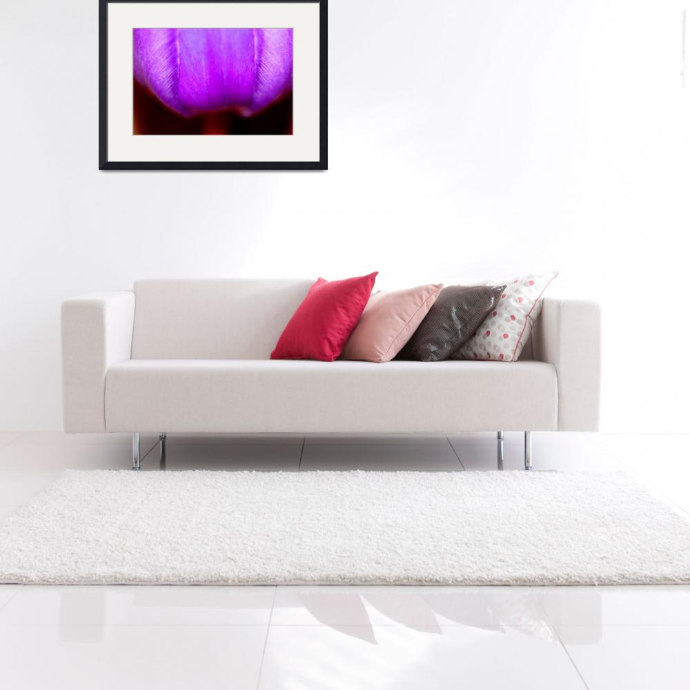 """""""Purple Petals&quot  (2009) by rayjacque"""