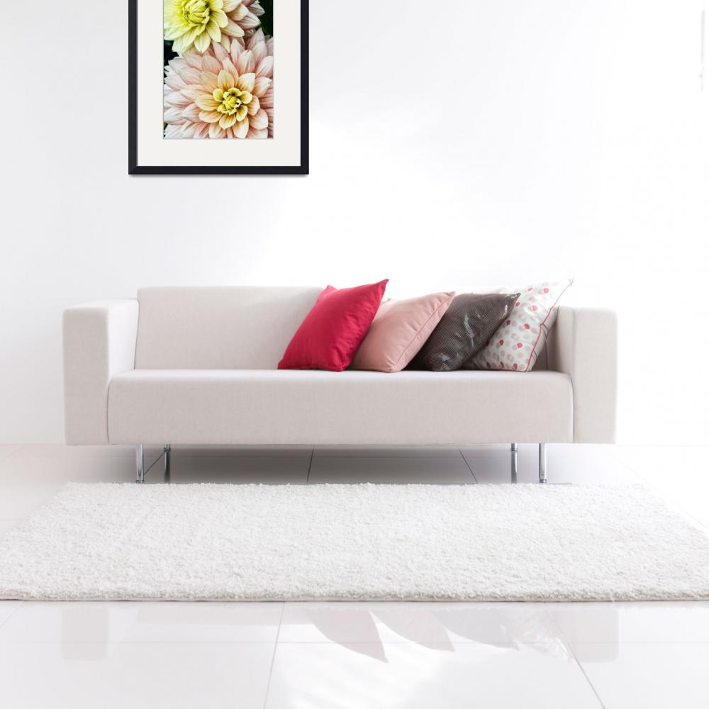 """Dahlia Twins&quot  (2012) by SoulfulPhotos"