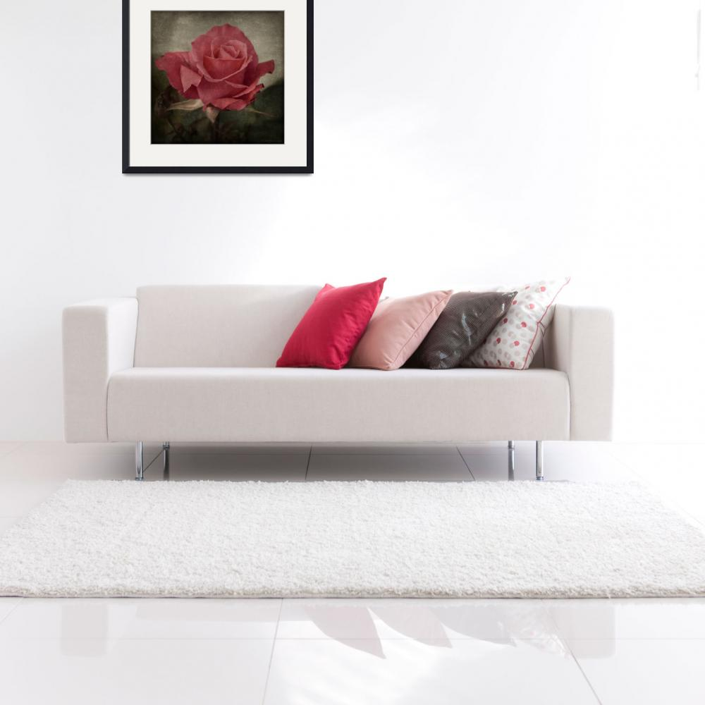 """""""Rose""""  (2009) by Telzey"""