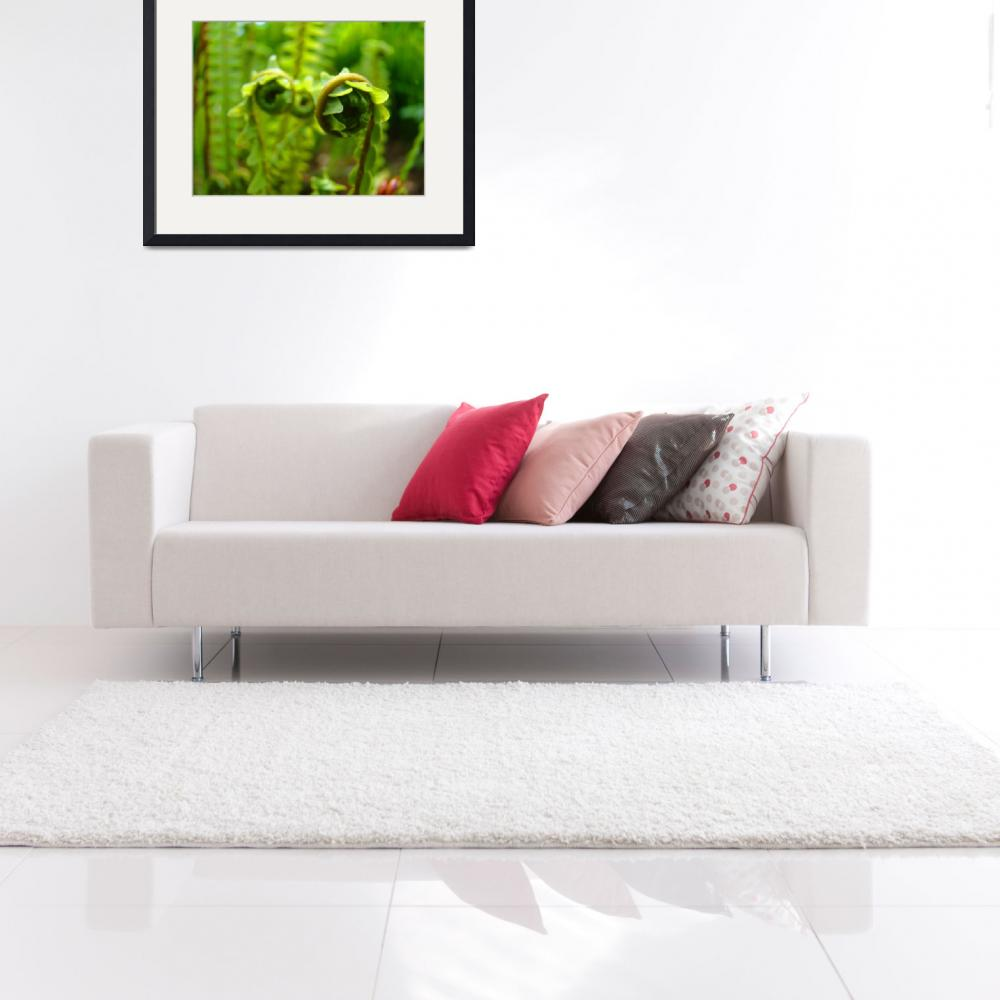 """Fern Fronds art print Green Forest Ferns Baslee&quot  (2010) by BasleeTroutman"