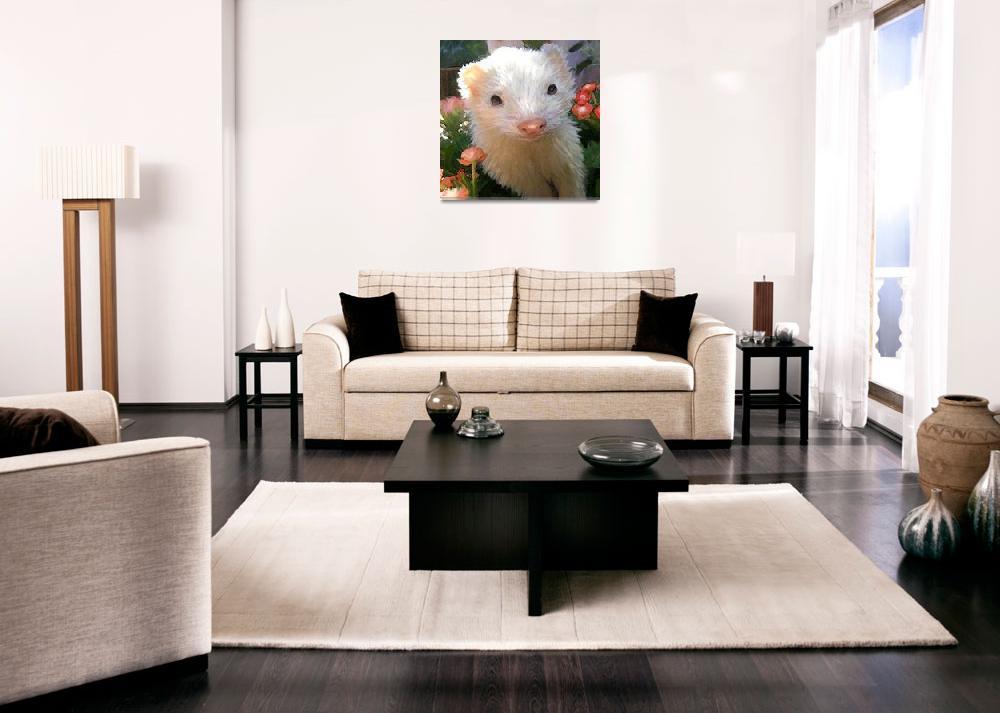 """""""white ferret""""  (2009) by pietrastone"""