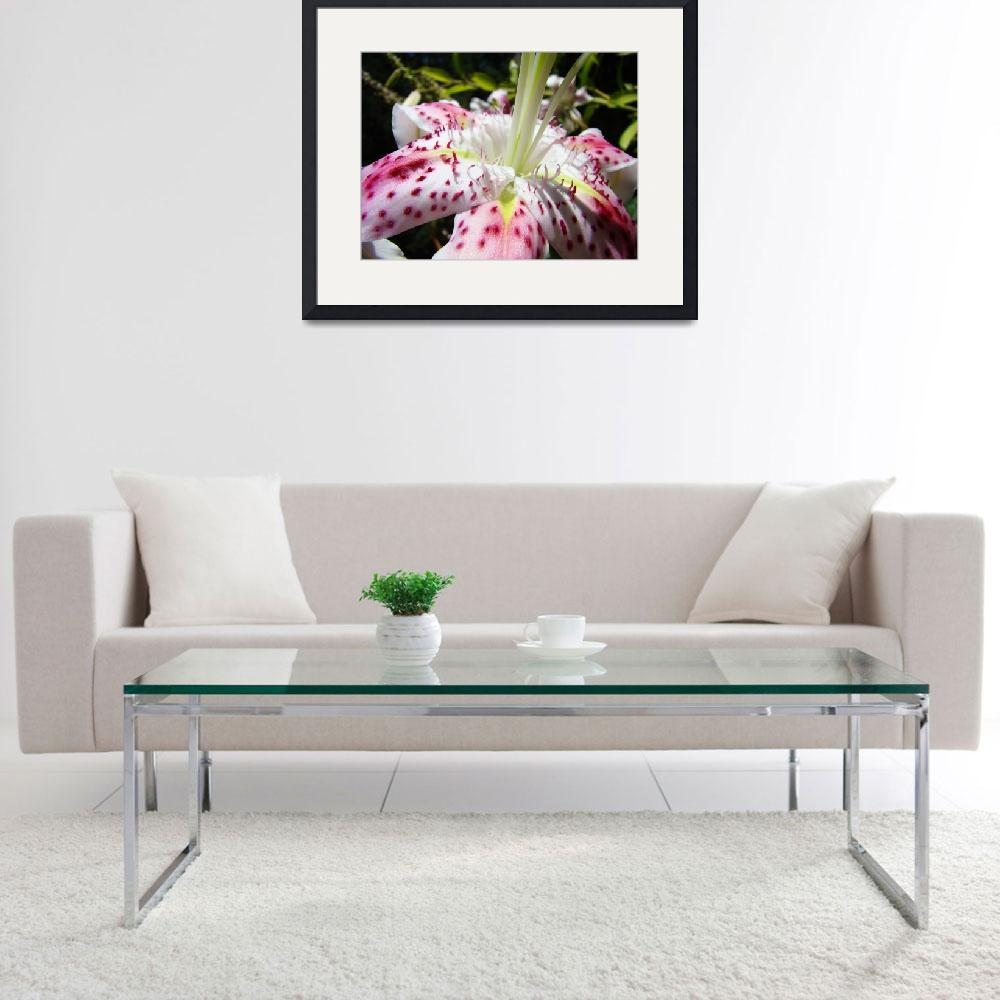 """OFFICE ART Prints Floral Pink Lily Flower Art&quot  (2009) by BasleeTroutman"