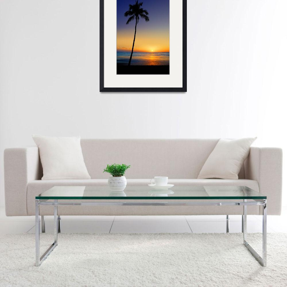 """""""Leaning Sun Palm&quot  (2009) by Surrealize"""