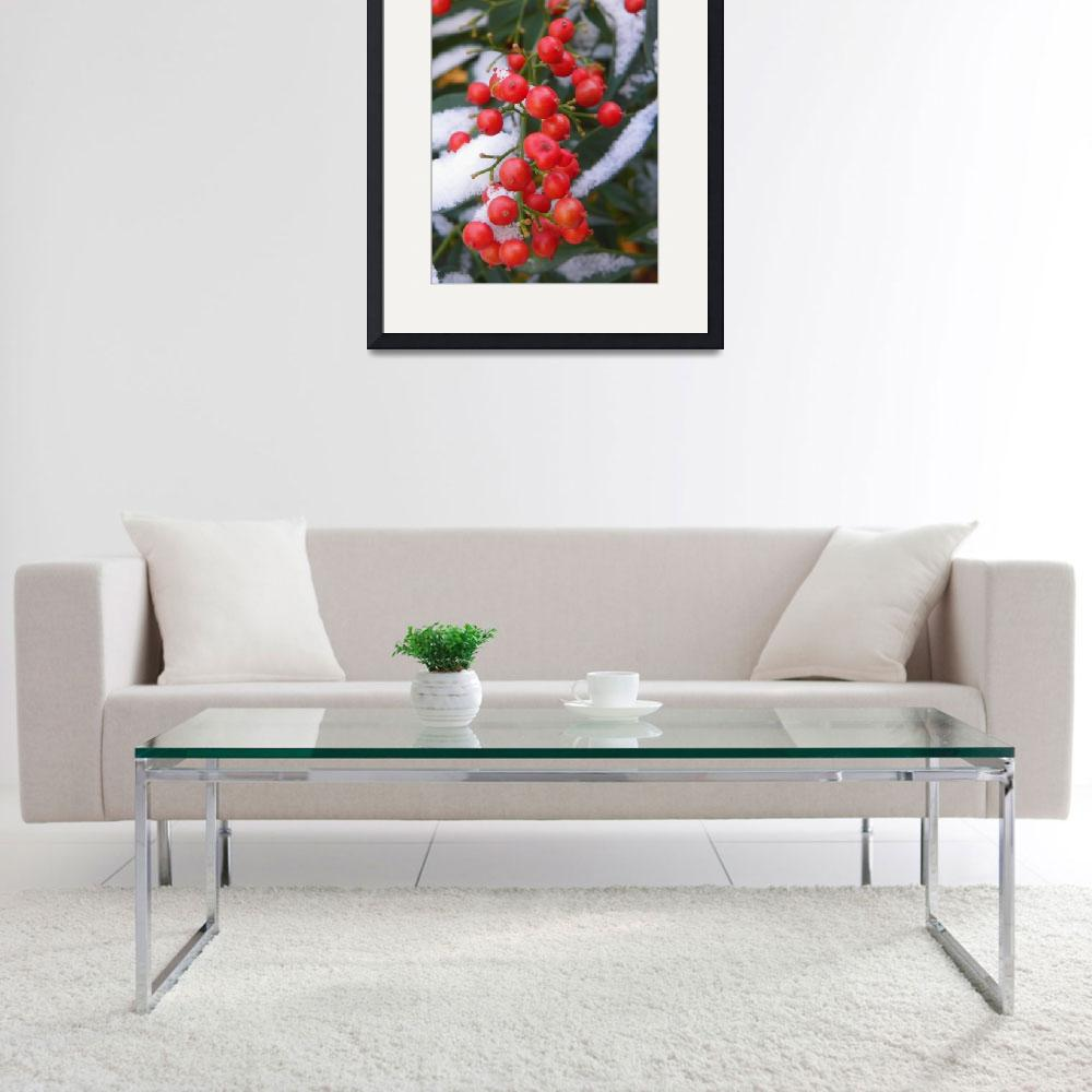 """""""Botanical - Red Berries - Outdoors Beauty&quot  by artsandi"""