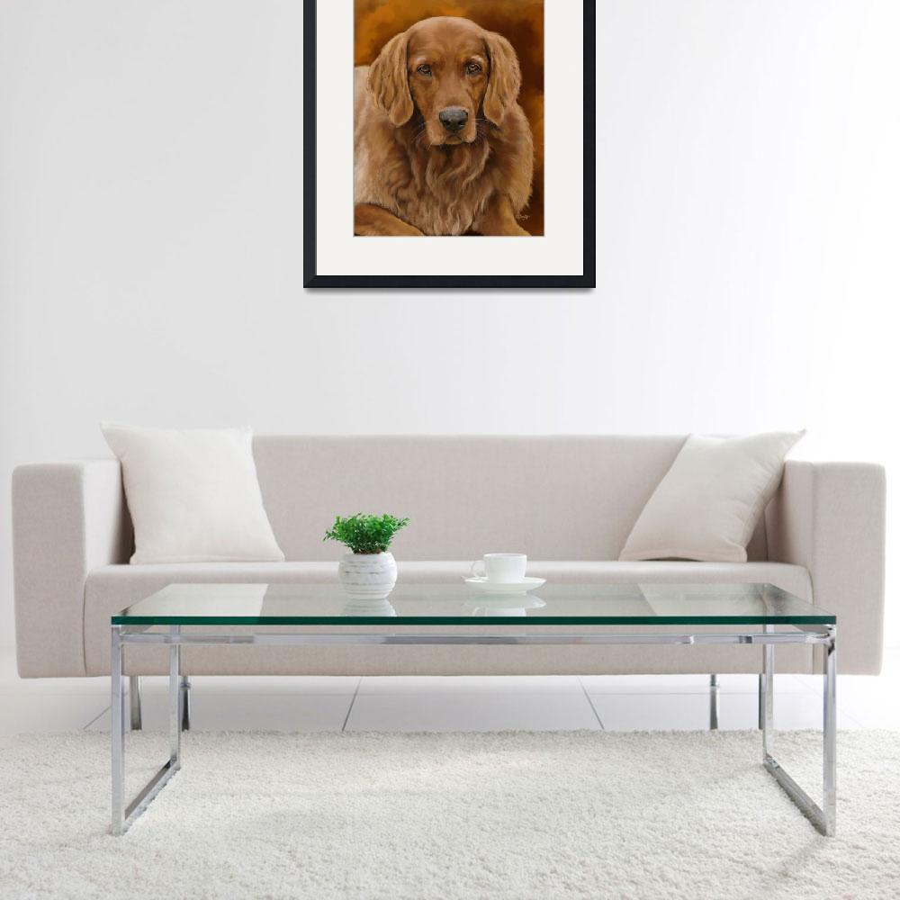 """Tucker - Golden Retriever&quot  by Tim"
