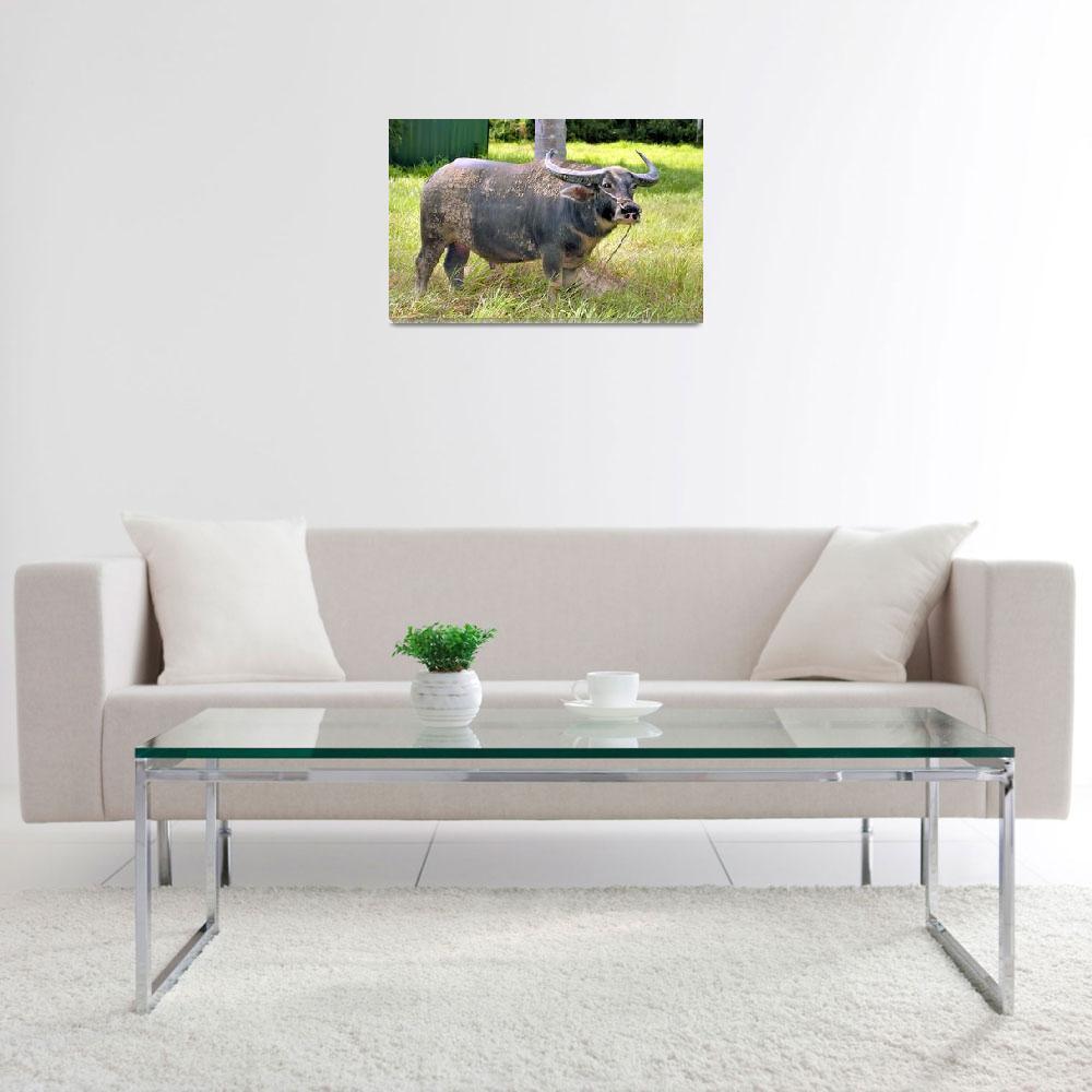 """Healthy Water Buffalo""  (2003) by JoaoPonces"