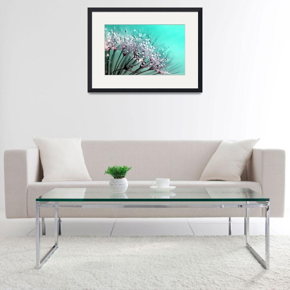 """""""Dandelion With Water Droplets Fine Art Photography&quot  by modernartgallery"""