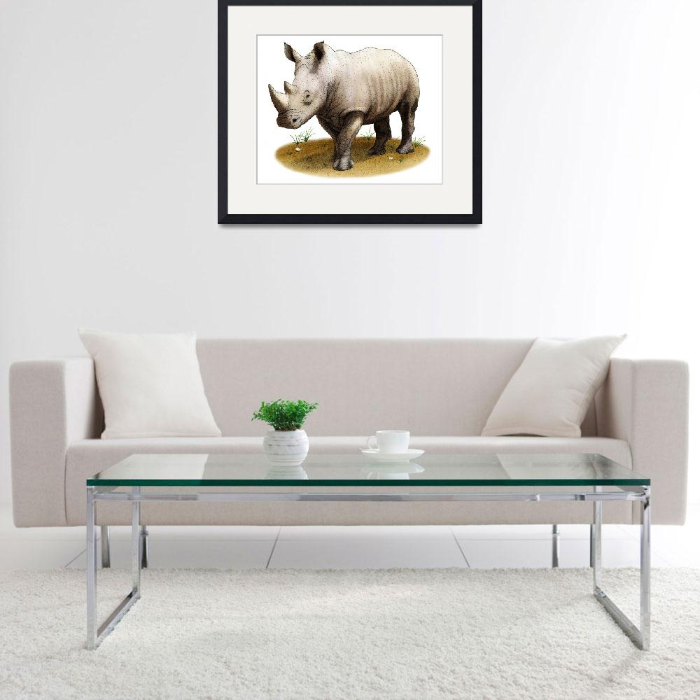 """White Rhinoceros&quot  by inkart"