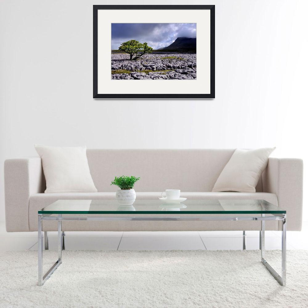 """""""The Yorkshire Dales - Ingleborough from White Scar&quot  (2010) by Dave_Lawrance_Photography"""