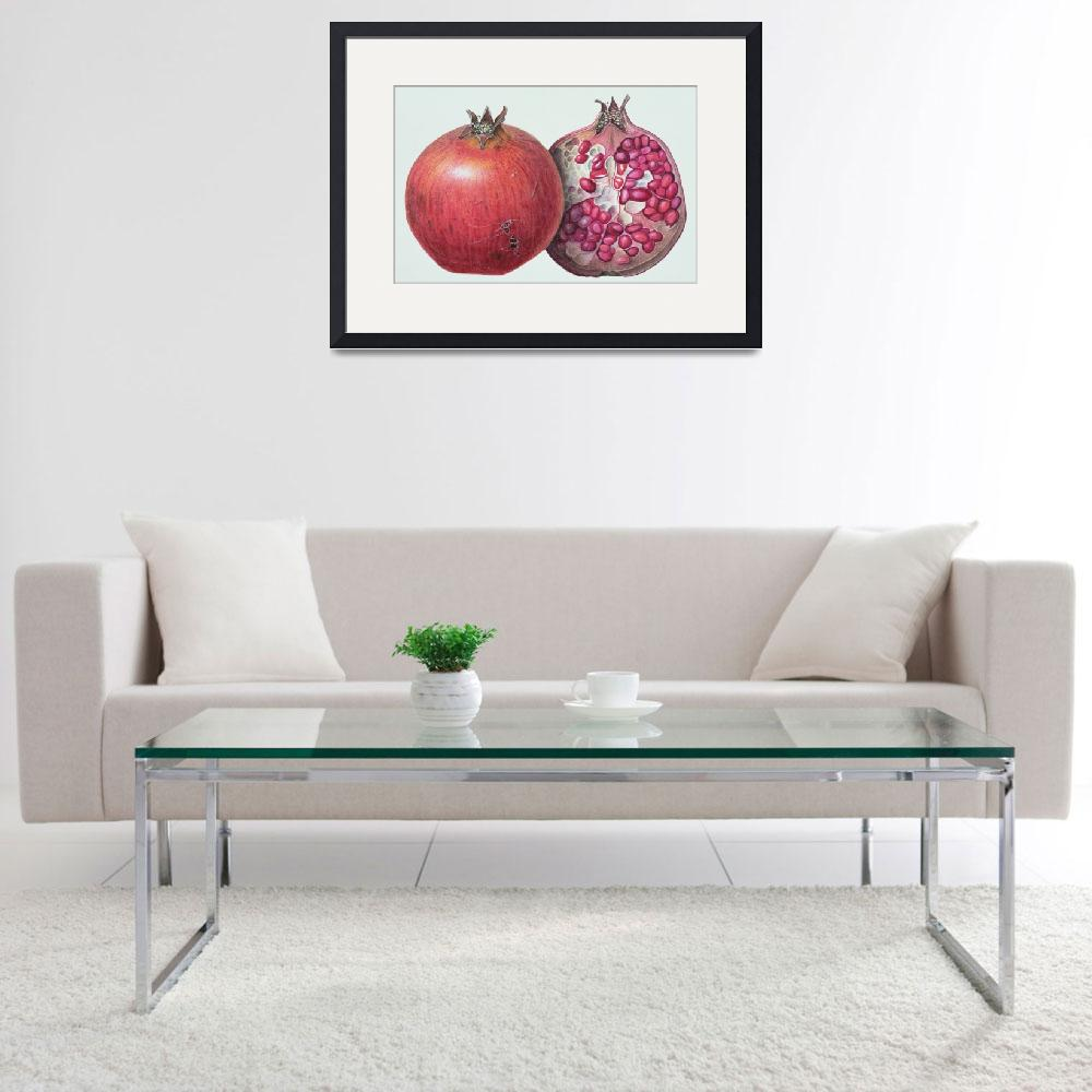 """""""Pomegranate by Margaret Ann Eden&quot  by fineartmasters"""