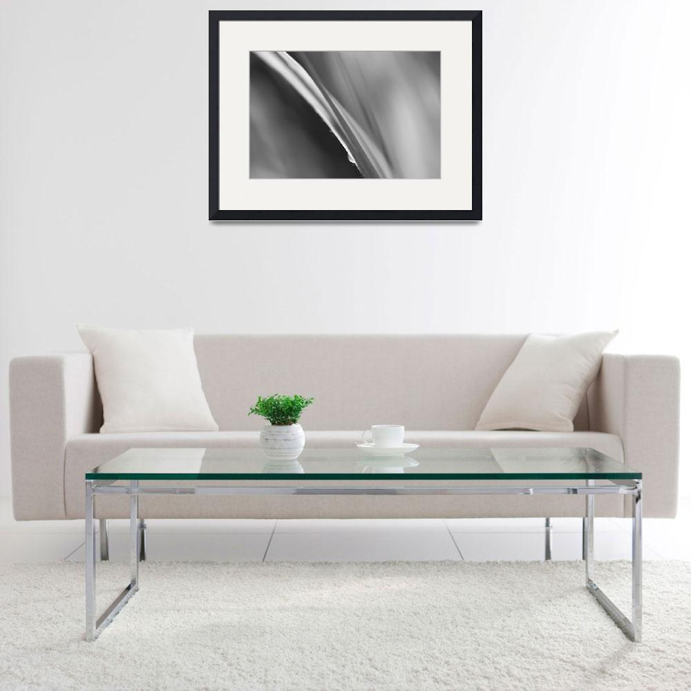 """""""Black and White Abstract - Sole Waterdrop in Grass&quot  (2015) by NatalieKinnear"""