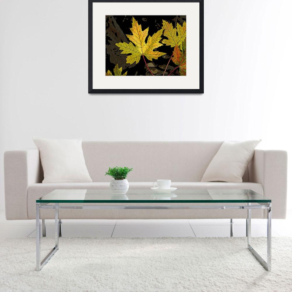 """""""Maple leaves&quot  (2007) by eye4nature"""