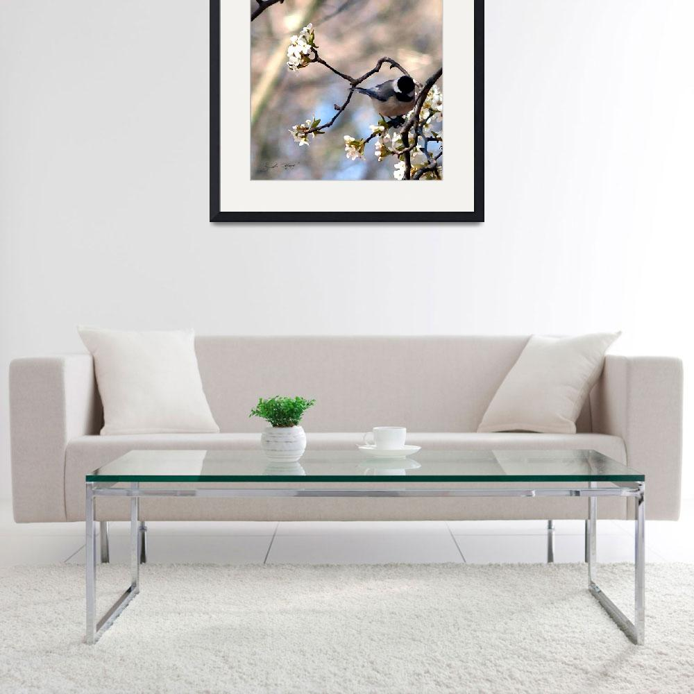 """""""Songbird Photographic Print by Ginette Callaway""""  (2009) by GinetteCallaway"""