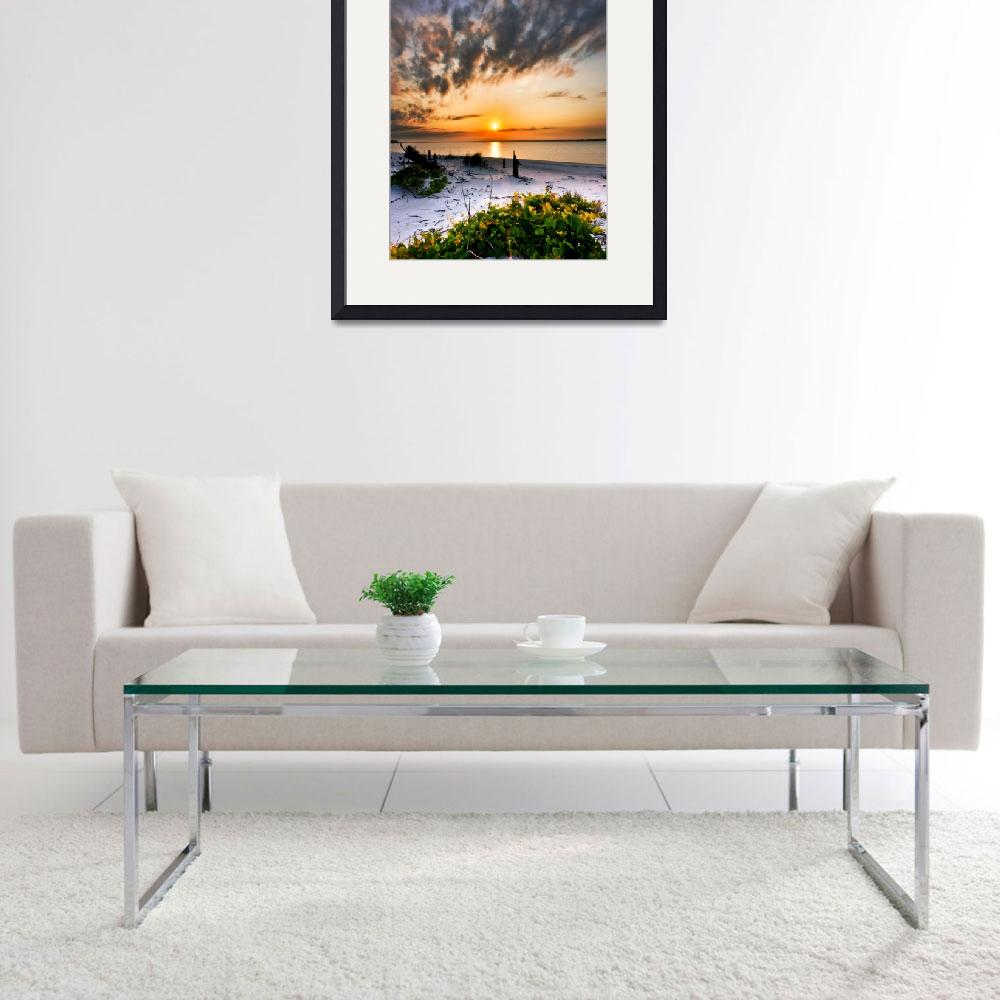"""Green Grape Vines Orange Sunset Beach Art Prints""  (2008) by eszra"