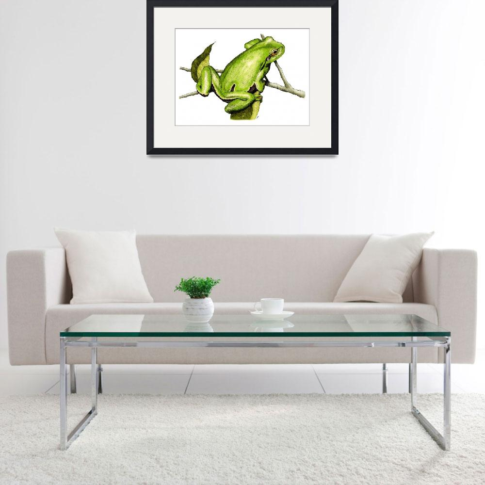 """""""European Tree Frog&quot  by inkart"""