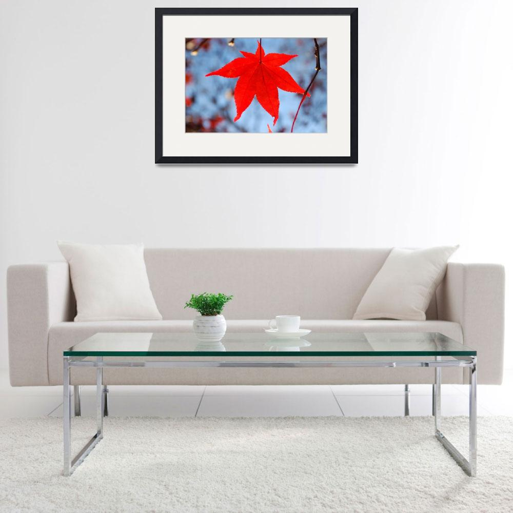 """""""Red Leaf, Blue Sky&quot  by DearbornDesign"""