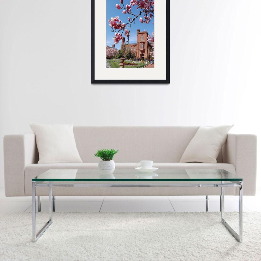 """""""Smithsonian Castle and Blossoms&quot  (2011) by phillipc81"""