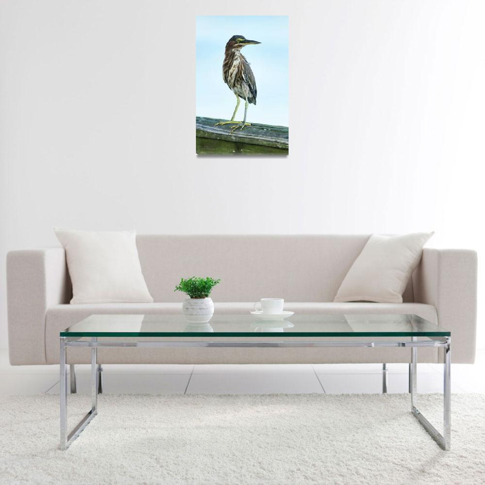 """Green Heron On The Dock""  (2015) by DBenoit"