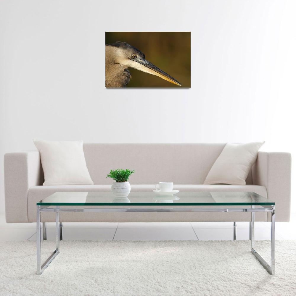 """Great Blue Heron Profile""  (2006) by DenisW"