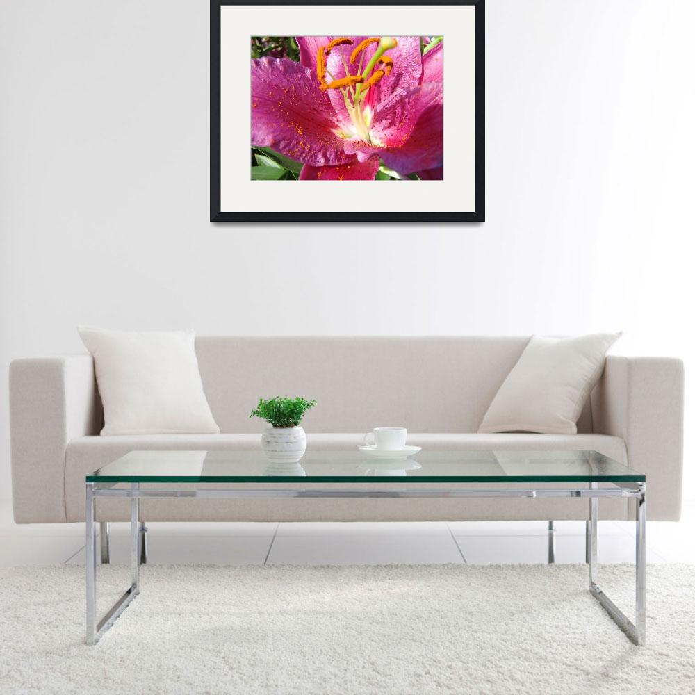 """""""OFFICE ART Prints Floral Pink Lily Flower Art&quot  (2009) by BasleeTroutman"""