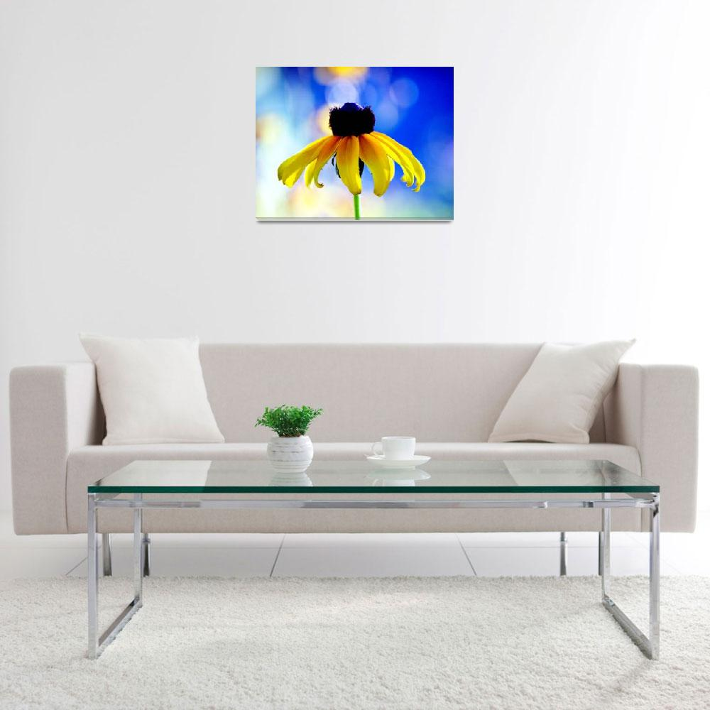"""""""Black Eyed Susan on Blue&quot  by lawatha"""