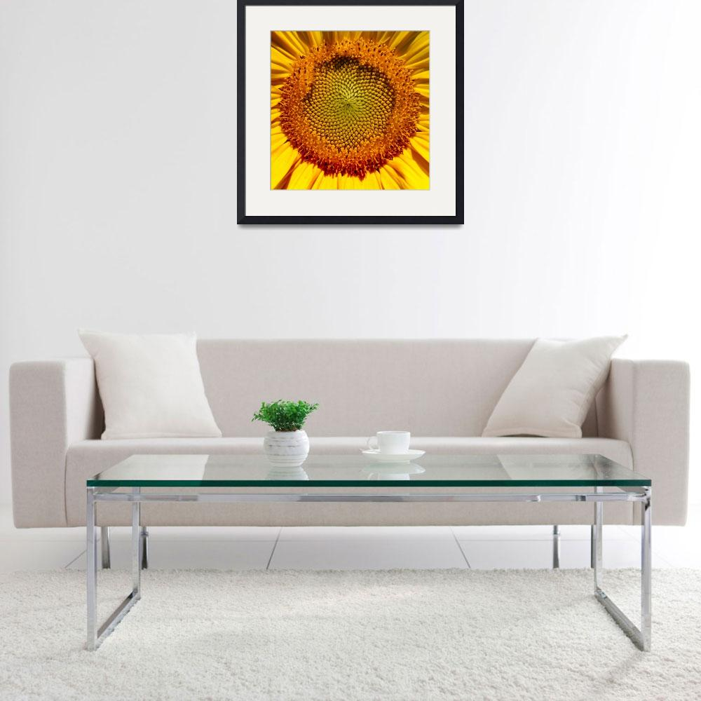 """Sunflower Square""  (2015) by KsWorldArt"