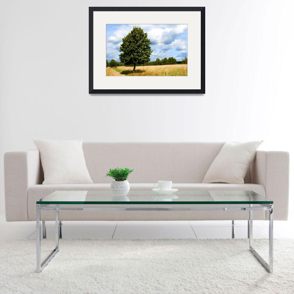 """""""tranquil landscape with one tree as a subject&quot  by sweethobbes"""