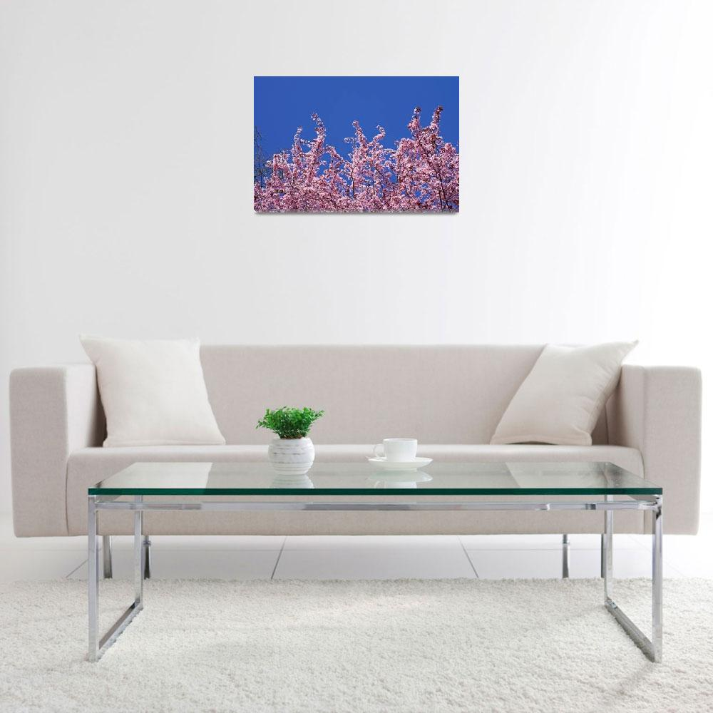 """""""Blue Sky Art Prints Pink Spring Tree Blossoms""""  by BasleeTroutman"""