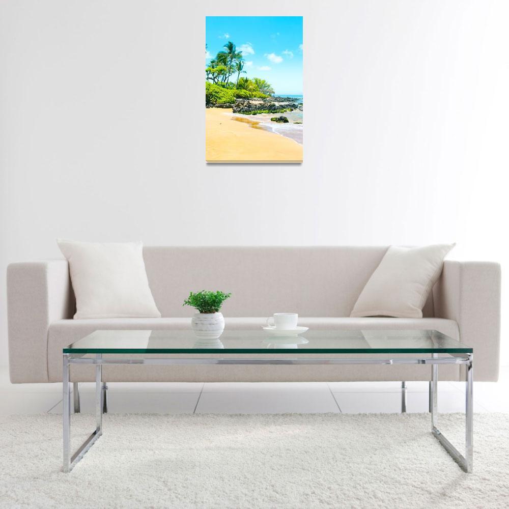 """Mokapu Beach Maui Hawaii""  (2017) by sharonmau"