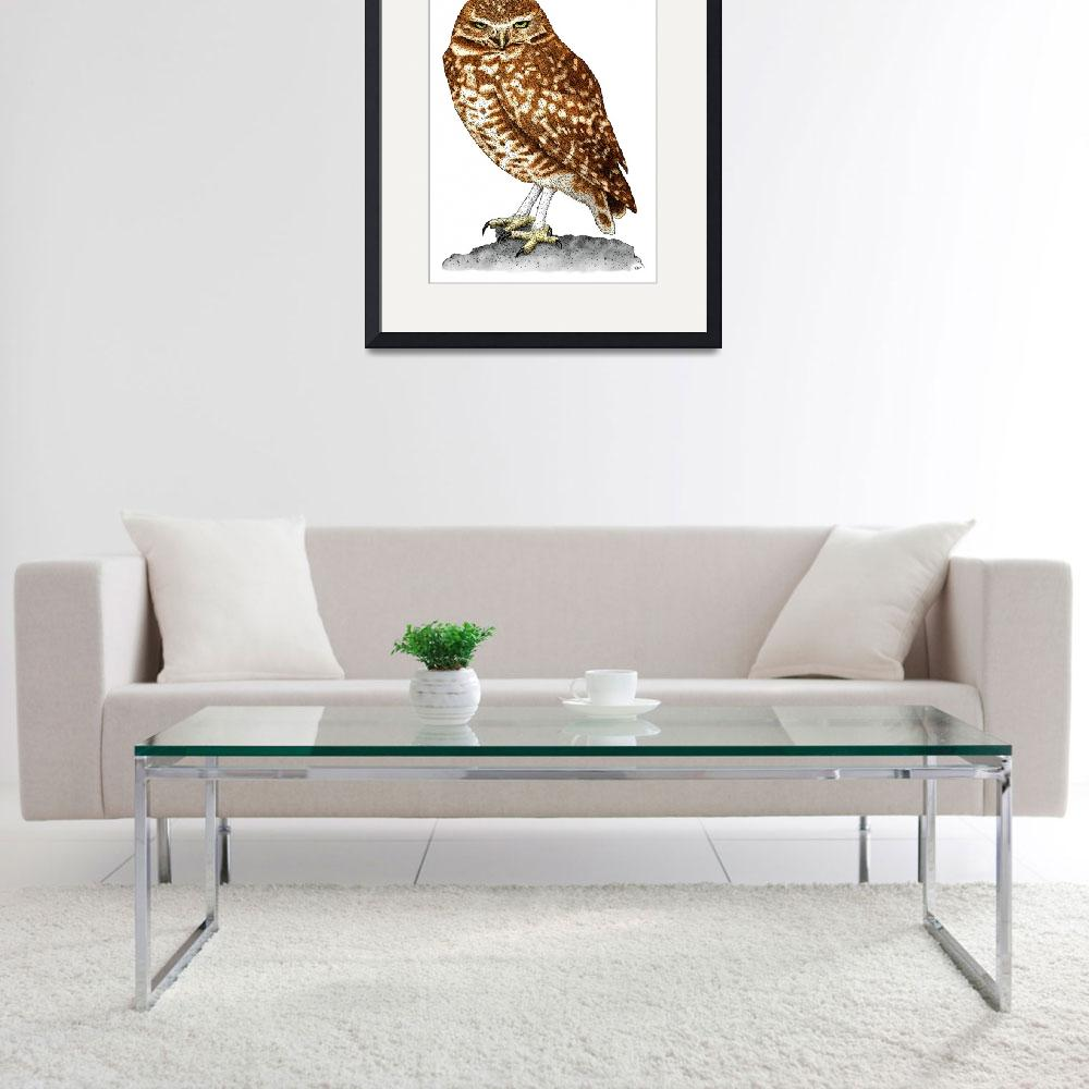 """""""Burrowing Owl&quot  by inkart"""